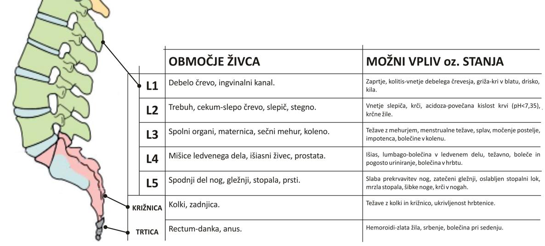 Hrbtenica_pregled simptomov